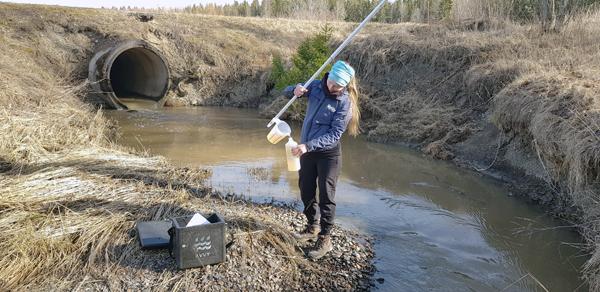 Hanna Alajoki KVVY ry ottaa ojasta vesinäytettä